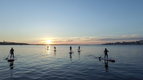 Standup Paddleboarding Experience