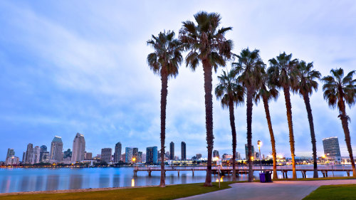 Full-Day San Diego Highlights & La Jolla Tour by Another Side Tours