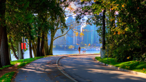 Walking Tour in Coal Harbour & Stanley Park