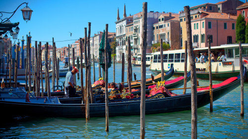 5-Day Italy Tour: Assisi, Siena, Florence, Bologna, Venice & Padua