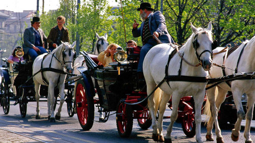 Horsedrawn Carriage Tour & Hop-On Hop-Off Bus Pass