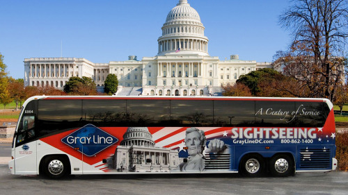 DC in a Day: Guided Full-Day City Highlights Tour