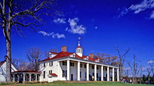 Mount Vernon & Arlington National Cemetery Full-Day Tour