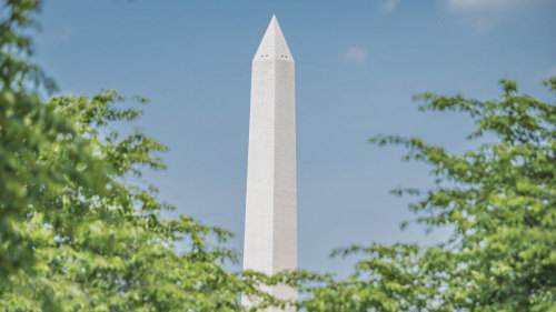 Half-Day Washington Monument & City Highlights Tour